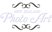 Category: Behind the Scenes | NZ Photo Art